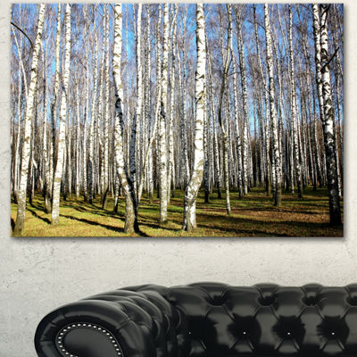 Designart Sunny Autumn Birch Grove Modern ForestCanvas Art - 3 Panels