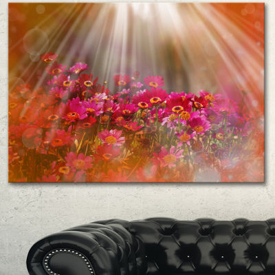 Design Art Sunrays Over Little Red Flowers Large Floral Canvas Artwork - 3 Panels