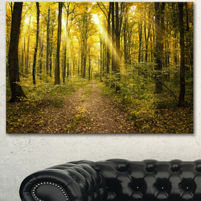 Designart Sunset In Green Autumn Forest Modern Forest Canvas Art