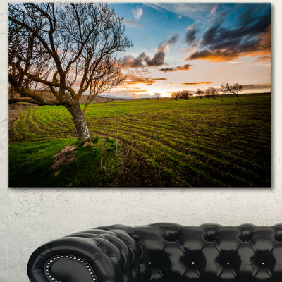 Designart Sunset In Sardinia Grassland Extra LargeLandscape Canvas Art Print