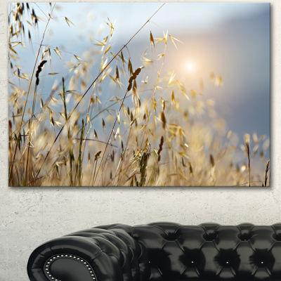 Designart Typical Tuscany Sunset Italy LandscapeCanvas Art Print