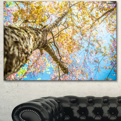 Designart Under Branch Of Yellow Cherry Tree TreesCanvas Art Print
