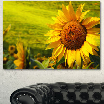 Designart Tuscany Sunflowers On Green Floral Canvas Art Print