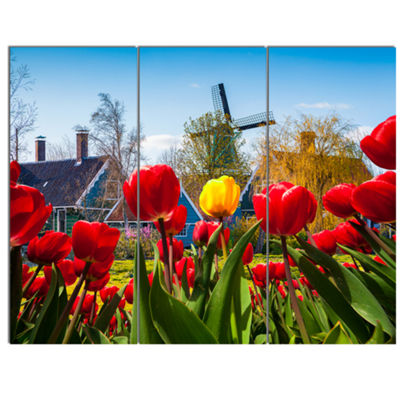 Designart Tulips In The Netherlands Village FloralCanvas Art Print - 3 Panels