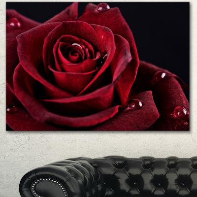 Designart Red Rose With Raindrops On Black FlowersCanvas Wall Artwork
