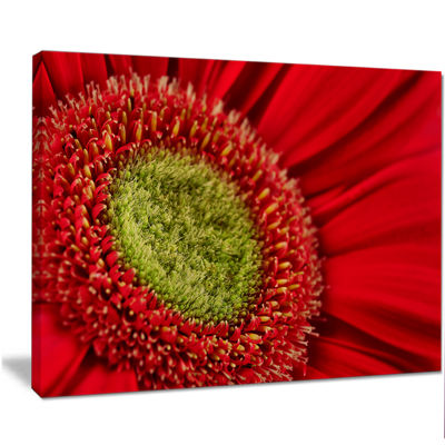 Designart Red Daisy Gerbera Flower Close Up Flowers Canvas Wall Artwork