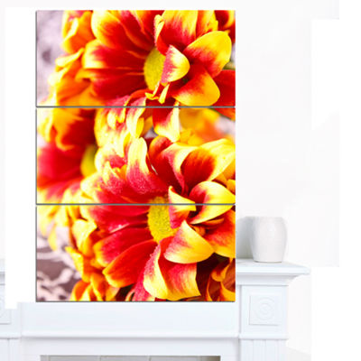 Designart Red Yellow Flower Background Photo LargeFloral Canvas Artwork - 3 Panels