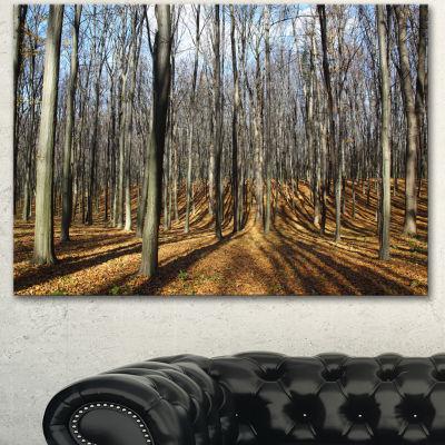 Designart Shade From Sun In Autumn Forest ModernForest Canvas Art - 3 Panels