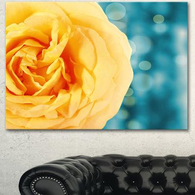 Designart Rose Flower With Lit Up Background LargeFloral Canvas Artwork