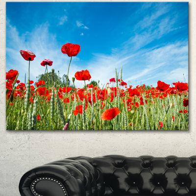 Designart Red Poppy Garden Under Clear Sky FloralCanvas Art Print - 3 Panels