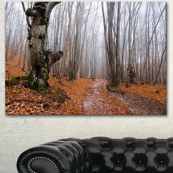 Designart Road Covered By Fallen Leaves Modern Forest Canvas Art