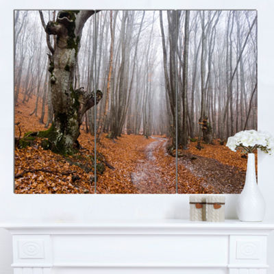 Designart Road Covered By Fallen Leaves Modern Forest Canvas Art - 3 Panels