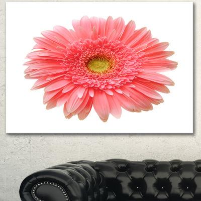 Design Art Single Daisy On White Background FloralCanvas Art Print - 3 Panels