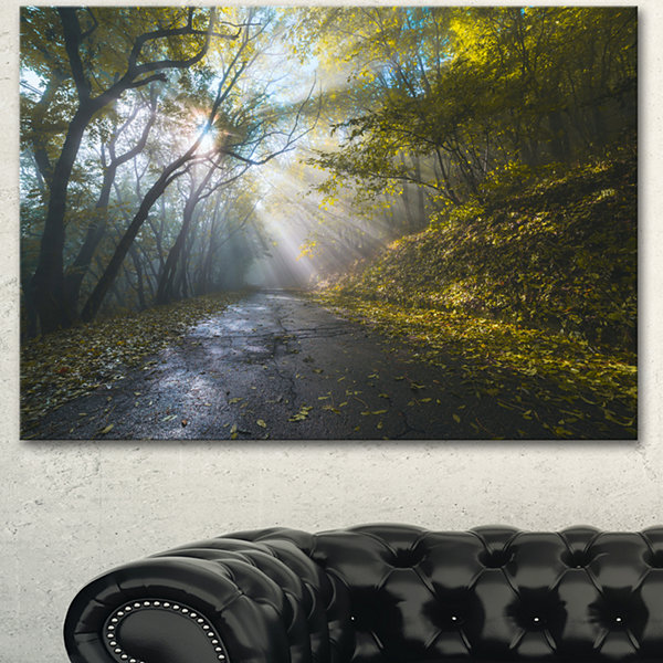 Designart Road In Autumn Forest At Sunset Large Landscape Canvas Art Print - 3 Panels