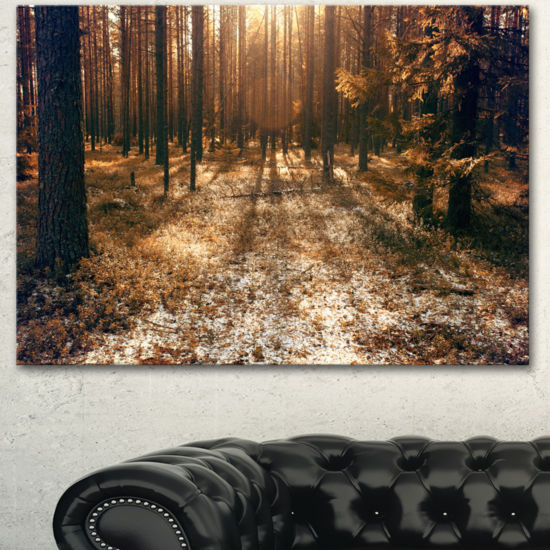 Designart Road In Dark Wooded Forest Modern ForestCanvas Art
