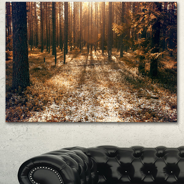 Designart Road In Dark Wooded Forest Modern ForestCanvas Art - 3 Panels
