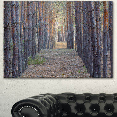 Design Art Slender Pine Tree Forest Photography Modern Forest Canvas Art