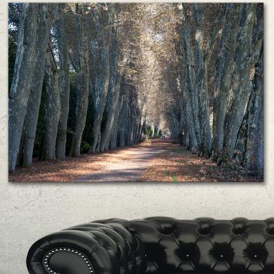 Design Art Road In Thick Autumn Woods Modern ForestCanvas Art - 3 Panels