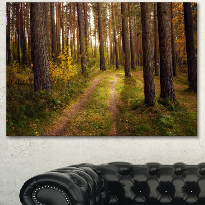 Designart Road Through Thick Fall Forest Modern Forest Canvas Art - 3 Panels