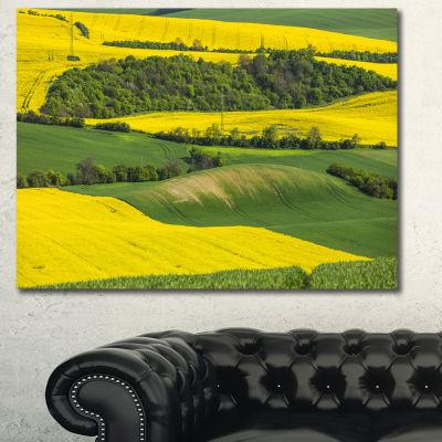 Designart Rapeseed Fields And Green Wheat Landscape Canvas Art Print