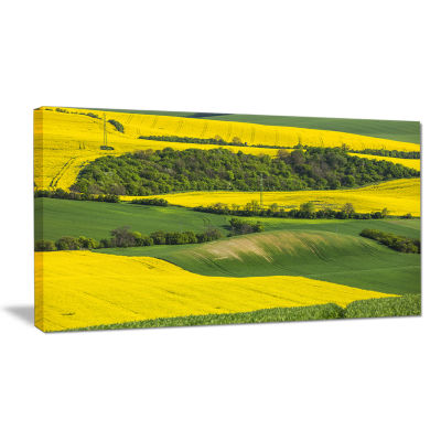 Designart Rapeseed Fields And Green Wheat Landscape Canvas Art Print