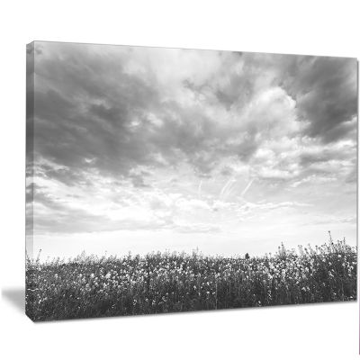 Designart Rapeseed Garden In Black And White LargeLandscape Canvas Art