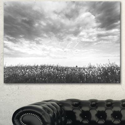 Designart Rapeseed Garden In Black And White LargeLandscape Canvas Art - 3 Panels