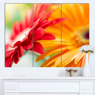 Designart Red And Yellow Daisy Flower Floral Canvas Art Print - 3 Panels