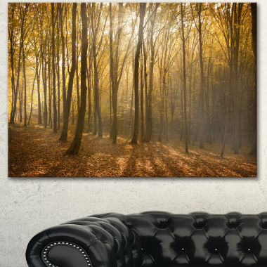 Designart Thick Green Fall Forest With Fog ForestCanvas Art Print