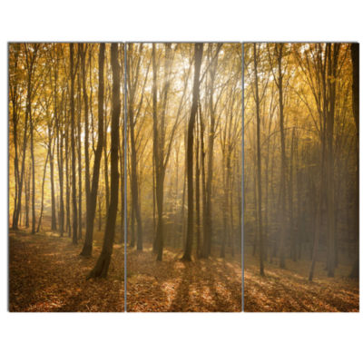 Designart Thick Green Fall Forest With Fog ForestCanvas Art Print - 3 Panels