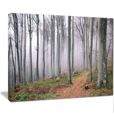 Designart Thick Woods In Morning Forest Modern Forest Canvas Art