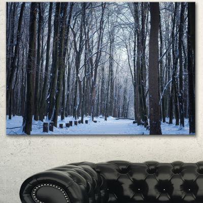 Designart Thick Woods In Winter Forest Modern Forest Canvas Art