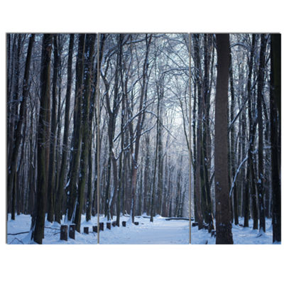 Designart Thick Woods In Winter Forest Modern Forest Canvas Art - 3 Panels
