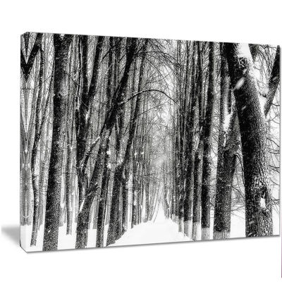 Designart Snowy Forest Black And White Modern Forest Canvas Art