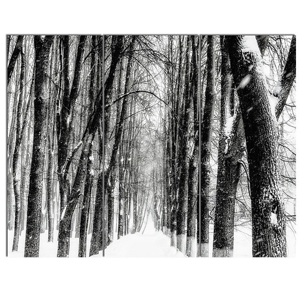 Designart Snowy Forest Black And White Modern Forest Canvas Art - 3 Panels