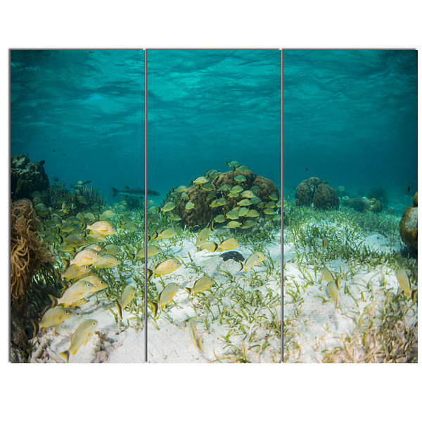 Designart School Of Grunts With Baracuda SeashoreCanvas Art Print - 3 Panels