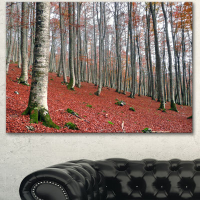 Designart Serene Fall Forest With Red Ground Modern Forest Canvas Art - 3 Panels