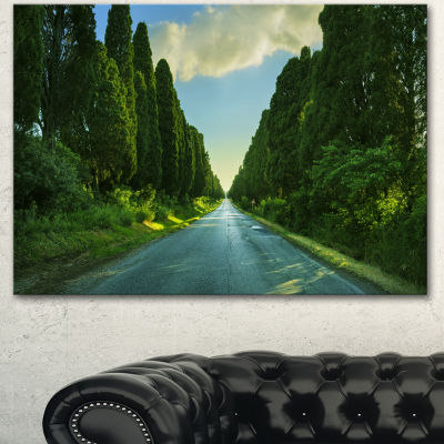 Designart Straight Cypress Trees Boulevard ModernLandscape Canvas Art - 3 Panels