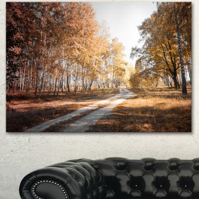 Designart Straight Road In Fall Birch Grove ModernForest Canvas Art