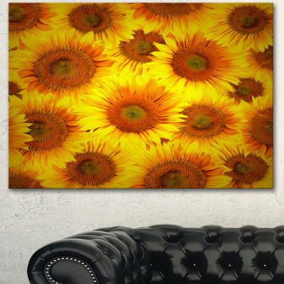 Designart Sunflower Heads Decorative Background Large Floral Canvas Art Print - 3 Panels