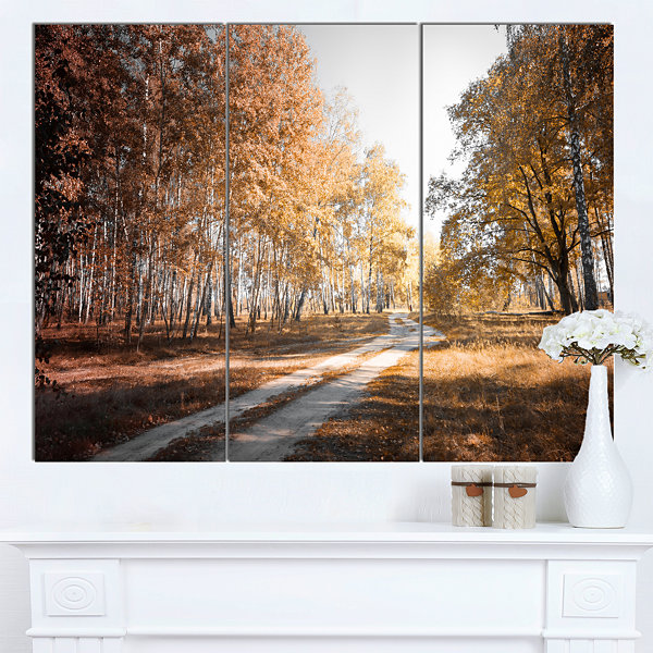 Design Art Straight Road In Fall Birch Grove ModernForest Canvas Art - 3 Panels