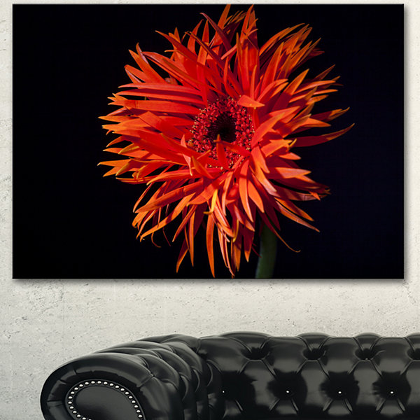 Design Art Spider Gerbera Daisy Watercolor FlowersCanvas Wall Artwork - 3 Panels