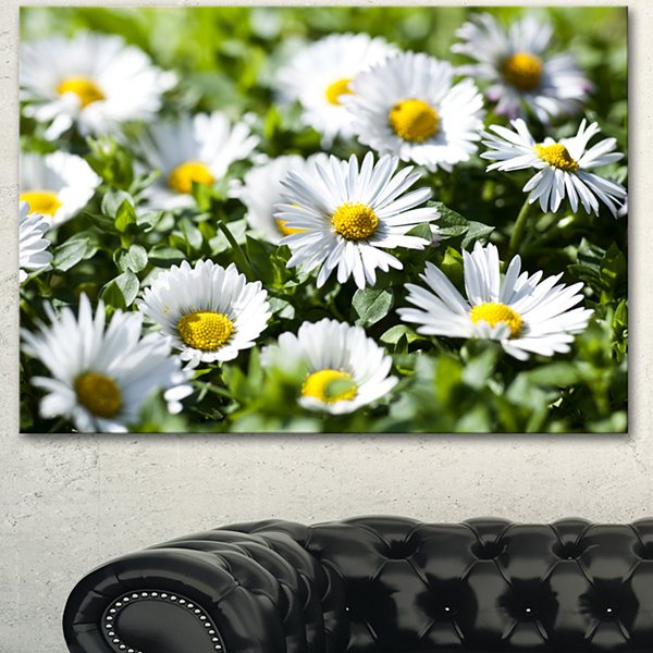 Designart Spring Background With White Flowers Floral Canvas Art Print