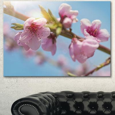Designart Stem Of Peach Blossom Flowers Floral Canvas Art Print