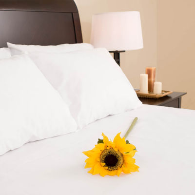 Adi Hospitality Villa Park 300tc Sateen Queen Flat Sheet