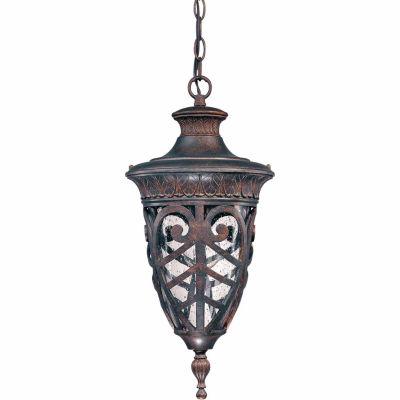Filament Design 1-Light Dark Plum Bronze Outdoor Hanging Lantern