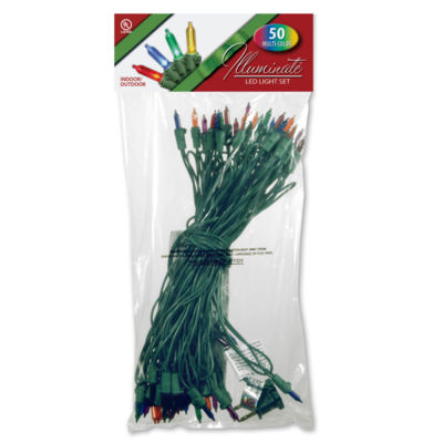 National Tree Co. 50 Led Multi-Color Indoor/Outdoor String Lights