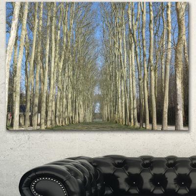 Designart Gardens Of Palace Versailles Modern Forest Canvas Art