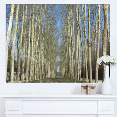 Designart Gardens Of Palace Versailles Modern Forest Canvas Art - 3 Panels