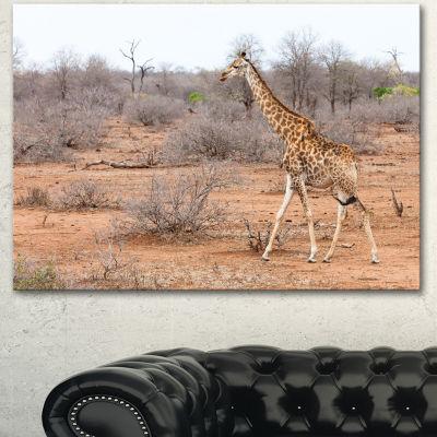 Designart Giraffe Walking Through African ForestAnimal Canvas Art Print - 3 Panels